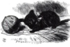 elusiveat2: (Black Kitten)