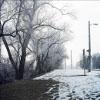 ljplicease: (frosty morning)