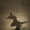 ljplicease: (shadow4)