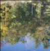 ljplicease: (reflecty)