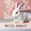 fiercebunny: (bpal white rabbit)