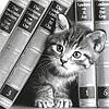 tabbys_fics: (kitten)