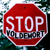 sighnomore: (stop voldemort)