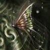 lealter: (темная бабочка)