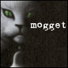persephone_kore: (Mogget)