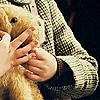 euphrosyna: (Narnia: teddy)