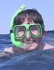 fivemack: (snorkel)