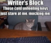 clhollandwriter: (block)