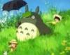 kysya: (Totoro)