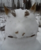 kofelj: (snowman)