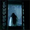 dalpaengi: (fuchsia by the window)