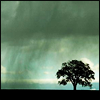 evel_lin: (Rain)