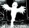 whitecr0w: (Default)