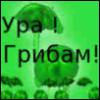 amati_fi: (мир грибов)