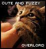 wilhelmina_d: (cute fuzzy overlord)