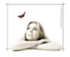 frs_vetlana: (окошко с бабочкой)