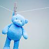 thornsilver: (blue bear)
