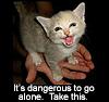 one_word: (Fierce kitty)