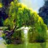 tshuma: (green, plants, willow)