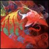 tshuma: (fishswirl)