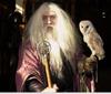 aurelianus: (Wizard with Owl)