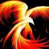 ironphoenix: (flaming)