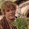 peripety: (lotr-sam gardening)