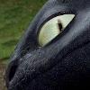 catdragon: (Toothless12)