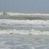demariana: (waves)