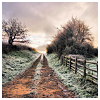 katieshope: (road (pretty pixels))