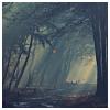 katieshope: (serene (pretty pixels))