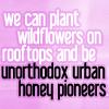 jencat: (pushing daisies; unorthodox urban honey)