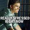 jencat: (stress, dexter)