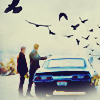 dollarformyname: (spn.birds)