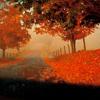 i_love_freddie: (autumn2)
