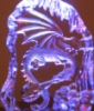 adelheid_p: (Purple Dragon)