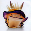 nehluka: (nudibranch!)