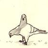 adamkenney: (Two-Headed Pigeon)