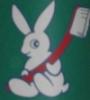 adamkenney: (Bunny Brush)