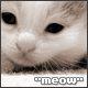 akatsija: (meow)