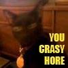 wickedflea: (lonzie crasy)