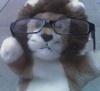 kinra: (lion cute)