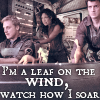 tamchronin: (I am a leaf on the wind - Firefly)