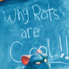 doodlesthegreat: (Cool Rats)