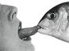 zyplionok: (рыба)