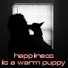 transmothra: (happiness is a warm puppy)