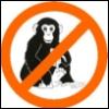 jinshei: (monkey)