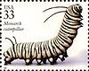 jodawi: (larva)