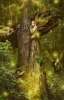 cambriancrew: (dryad)