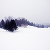 sylvan_being: (winter)